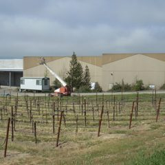 Outside view of new barrel building at Rodney Strong Vineyard